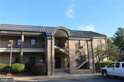 Alexandria Commercial For Sale: 4601 Pinecrest Office Park Drive #G