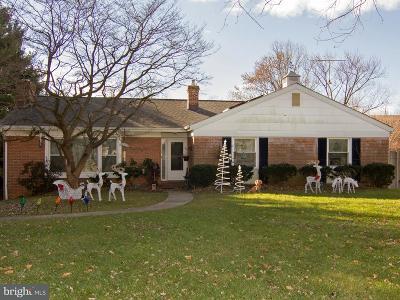 Baltimore Single Family Home For Sale: 1125 Concordia Drive