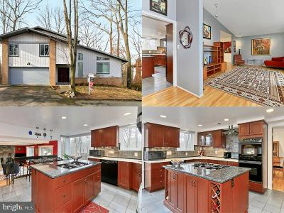 McLean Single Family Home For Sale: 6728 Pine Creek Court