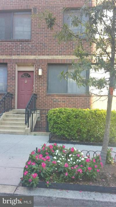 Rental For Rent: 1245 13th Street NW #109