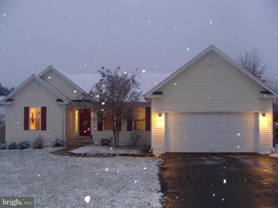 Fredericksburg Single Family Home For Sale: 5928 Glen Eagles Drive