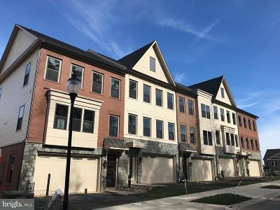 Gaithersburg Townhouse For Sale: 234 Caulfield Lane