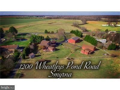 Smyrna Single Family Home For Sale: 1200 Wheatleys Pond Road