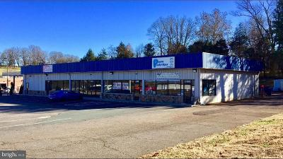 Orange County Commercial For Sale: 110 Berry Hill Road