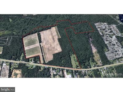 Residential Lots & Land For Sale: 3043 S Black Horse Pike