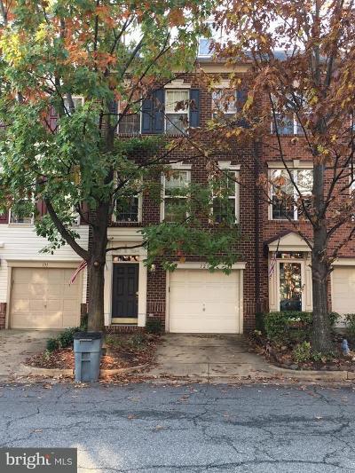 Alexandria Rental For Rent: 129 Martin Lane