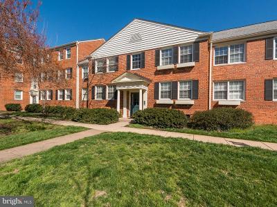 Alexandria Townhouse For Sale: 6604 Boulevard View #J