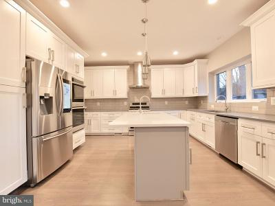 Falls Church Single Family Home For Sale: 213 W Greenway Boulevard