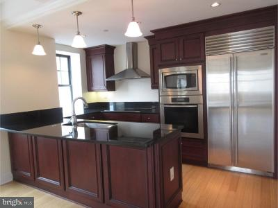 Philadelphia Single Family Home For Sale: 1701 Locust Street #1904