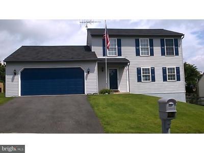 Birdsboro Single Family Home For Sale: 214 Crystal Circle