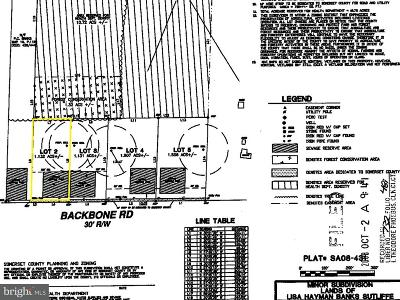 Somerset County Residential Lots & Land For Sale: Lot 2 Backbone Road