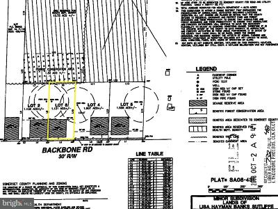 Somerset County Residential Lots & Land For Sale: Lot 3 Backbone Road