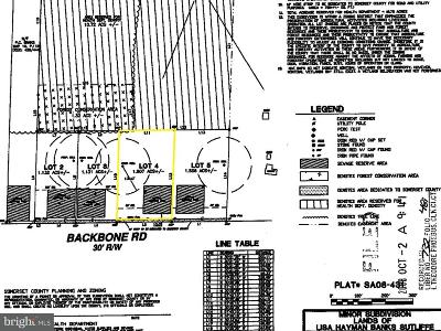 Somerset County Residential Lots & Land For Sale: Lot 4 Backbone Road