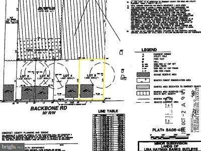 Somerset County Residential Lots & Land For Sale: Lot 5 Backbone Road
