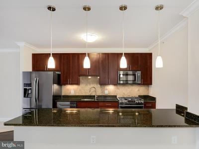 Alexandria Single Family Home For Sale: 6301 Edsall Road #516