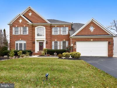 Fairfax County, Fairfax City Single Family Home For Sale: 13021 Dunhill Drive