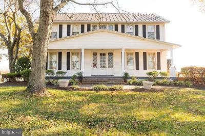 Gainesville, Haymarket Farm For Sale: 13613 Holly Ridge Lane