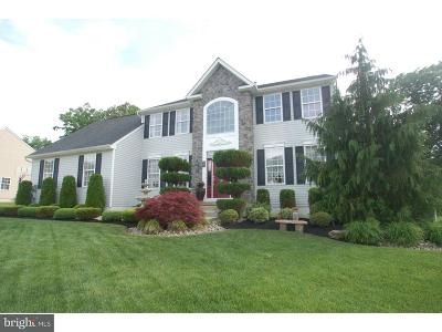 Millville Single Family Home For Sale: 53 Tomasello Drive