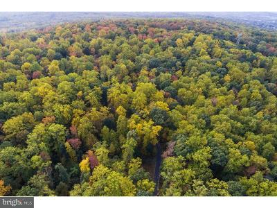 Bucks County Residential Lots & Land For Sale: 2224-A Quarry Road