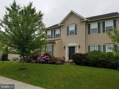 Avondale Single Family Home For Sale: 41 Kodi Circle