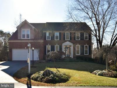 Centreville Single Family Home For Sale: 14802 Hickory Post Court