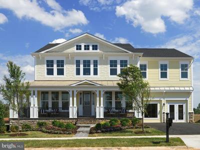 Leesburg Single Family Home For Sale: 1001 Akan Street SE