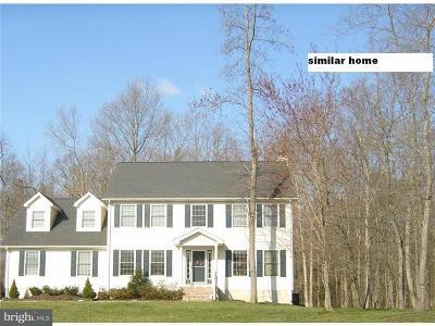 Magnolia Single Family Home For Sale: Frkln2b Phillips Drive