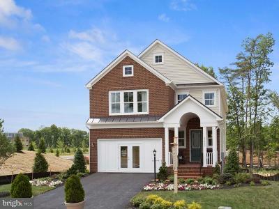 Ashburn Single Family Home For Sale: 23041 Canyon Oak Court
