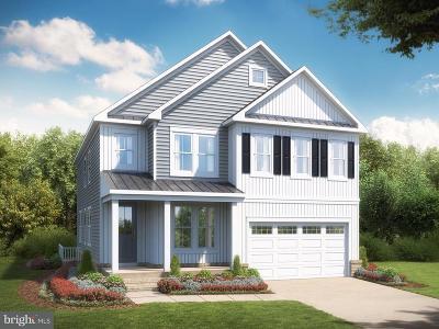 Ashburn Single Family Home For Sale: 23043 Canyon Oak Street