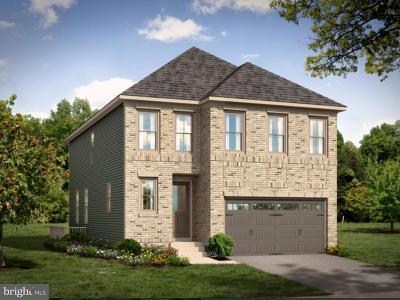 Ashburn Single Family Home For Sale: 3201 Babbling Brook Terrace
