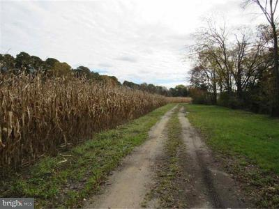 Millville Residential Lots & Land For Sale: 0` Hance Bridge Road