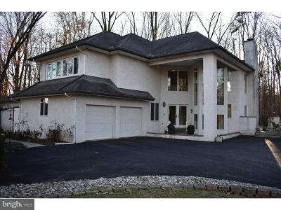 Douglassville Single Family Home For Sale: 445 Hill Road
