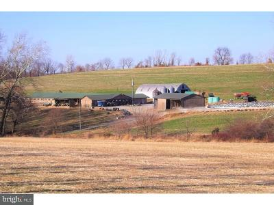 Strasburg Residential Lots & Land For Sale: 863 Winter Hill Road