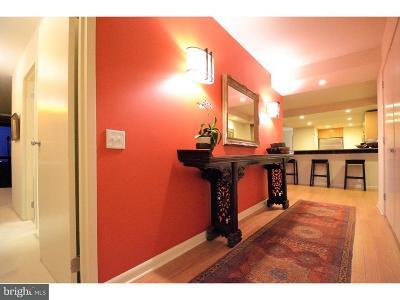 Washington Sq Condo For Sale: 241 S 6th Street #908-9