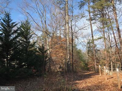 Spotsylvania Residential Lots & Land For Sale: 9609 Catharpin Road