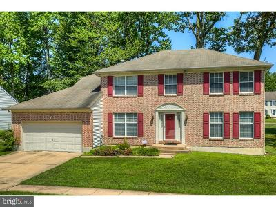 Newark Single Family Home Under Contract: 409 Douglas D Alley Drive