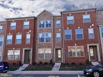 Ashburn Townhouse For Sale: 42253 Hampton Woods Terrace