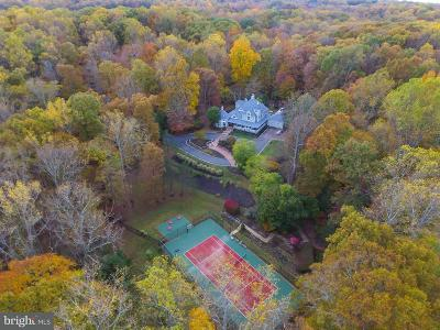 Centerville, Clifton Single Family Home For Sale: 11900 Custis Acres Drive