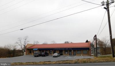 Waynesboro Commercial For Sale: 250 N Church Street