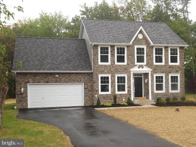 Single Family Home For Sale: 1849 Gallows Hill Road