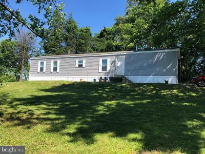 Birdsboro Single Family Home For Sale: 65 Robeson Lawn Road