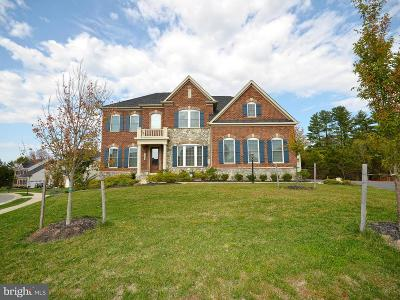 Chantilly Single Family Home For Sale: 26605 Marbury Estates Drive