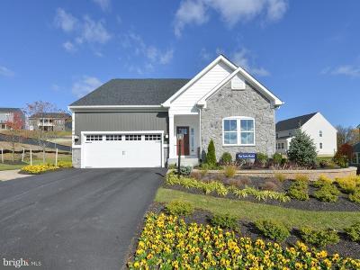 Harrisburg Single Family Home For Sale: 3907 Tim Tam Drive #S1 1019