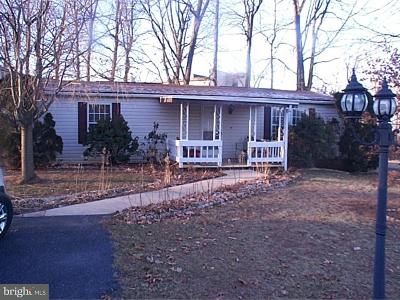Stevens Single Family Home Under Contract: 1 Stacey Court