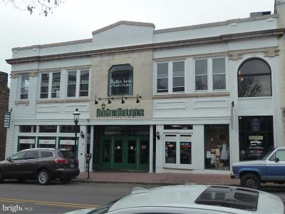 Doylestown PA Commercial For Sale: $1,500