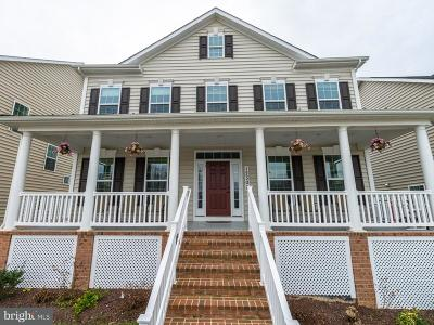 Clarksburg Single Family Home For Sale: 12302 Grey Squirrel Street