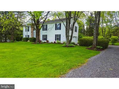 Bucks County Single Family Home For Sale: 320 Center Hill Road