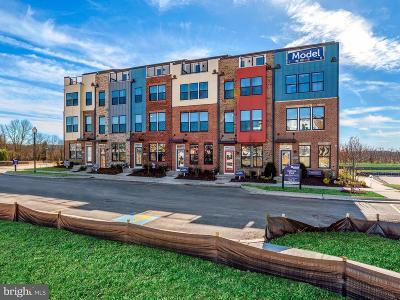 Hyattsville Townhouse For Sale: 3608 Journal Street #513B