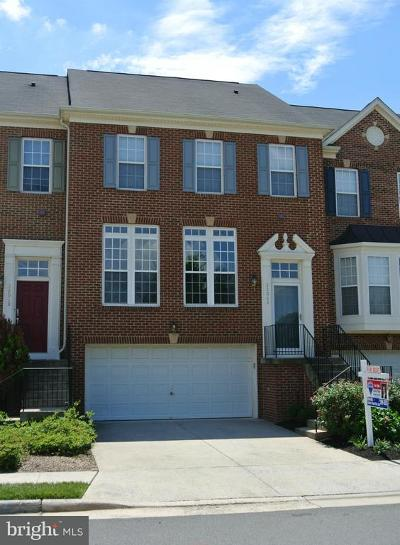 Ashburn Rental For Rent: 22062 Chelsy Paige Square