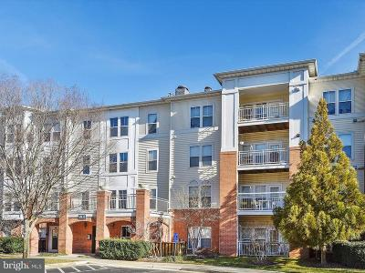 Fairfax Townhouse For Sale: 2911 Deer Hollow Way #223